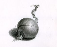 61 Ideas for fruit drawing pencil sketches Still Life Sketch, Still Life Drawing, Still Life Art, Graphite Drawings, Pencil Art Drawings, Drawing Sketches, Drawing Ideas, Shading Drawing, Painting & Drawing