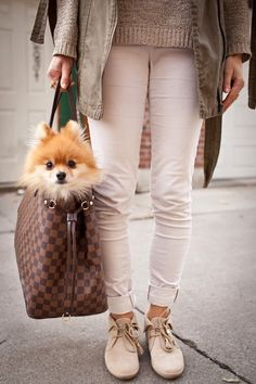 Trend StruckFur Baby Outfit Post  Louis Vuitton Neverfull Tote / Louis Vuitton Loafers / Winter Whites