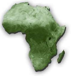 Placement in Africa Executive Search, New Africa, African Diaspora