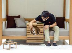 Bem Legaus!: Móvel de cachorro
