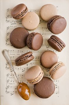 Variety of chocolate macaroons- so pretty!