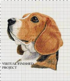 Beagle Portrait... Counted Cross Stitch Pattern Computer | Etsy Cross Patterns, Counted Cross Stitch Patterns, Beagle Pictures, Animal Wallpaper, World Of Color, Dog Art, Animal Drawings, Art Sketches, Dogs And Puppies