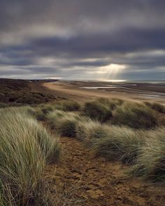 Cambersands being all moody like your teenager //// #cambersands #eastsussex #uk #england #dunes #sand #beach #coast #sea #water #sky #grass #clouds #overcast #light #gloomy #leadinglines #rayoflight #sonya6000 #nisifilters #manfrotto #sigma #captureonepro #every3secondsadonkeycries @visitrye #visitrye
