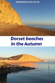 Stay at Andrewshayes Holiday Park to enjoy some of the Best Beaches in East Devon and West Dorset for Family, Dog Friendly and Safe. Dorset Beaches, Dog Friendly Holidays, Lyme Regis, Jurassic Coast, Holiday Park, Family Dogs, Stunning View, Dog Walking, Dog Friends