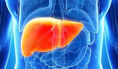 What are the causes of liver cancer? How to diagnose liver cancer? Liver cancer treatment and prevention methods? Clean Your Liver, Detox Your Liver, Liver Cleanse, Fitness Workouts, Liver Cancer Treatment, Anthony William, Liver Disease, Fatty Liver, Foie Gras