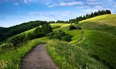 дорога тропинка холм