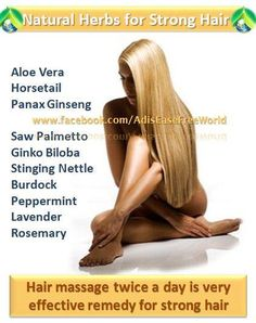 Natural Herbs for Strong Hair :  Baldness, thinning hair, receding hairline - whatever you want to call it, hair loss is a concern many experience particularly during mid to late adulthood. Even though males are usually prone to hair loss, females are not exempted from this condition too, especially with the advent of treatments such as hair dyeing, curling and straightening that expose hair to harsh chemicals and other conditions that can potentially cause long term damage.