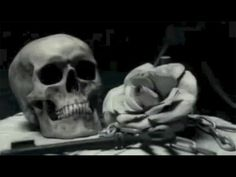 ▶ Cradle Of Filth - Nymphetamine [OFFICIAL VIDEO] -  The lyrics are absolutely brilliant....and twisted. Extreme Metal, Metal Bands, Music Videos, Skull, Songs, Cradle Of Filth, Youtube, Pop Rocks, Rock Music
