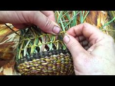 Ingrid Ridley weaving crossed pattern into her dilly bag basket. - YouTube