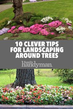 10 Clever Tips for Landscaping Around Trees Plop a tree in the middle of the yard and it may look out of place at first. But by landscaping around the tree, you make it look more attractive—and more at home. Landscaping Around Trees, Shade Landscaping, Landscaping With Rocks, Front Yard Landscaping, Modern Landscaping, Michigan Landscaping, Mulch Around Trees, Commercial Landscaping, Tropical Landscaping