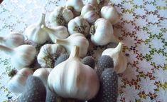 Prelucrarea și păstrarea usturoiului în borcane! - Sfaturi pentru casă și grădină Garlic, Vegetables, Vegetable Recipes, Veggies