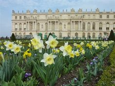 Paris in the Springtime!