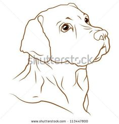 Find A beautiful vector illustration of a labrador retriever dog Stock Vectors and millions of other royalty-free stock photos, illustrations, and vectors in the Shutterstock collection. Thousands of new, high-quality images added every day. Perro Labrador Retriever, Retriever Puppy, Funny Dog Faces, Funny Dogs, Funny Puppies, Rambo 3, Dog Signs, Dog Paintings, Dog Art