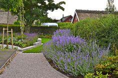 Fjärilsträdgården med kantnepeta, 'Walkers Low', anisört Agastache 'Black Adder' och 'Blue Fortune'. Salvia och lavendel. Olika prydnadsgräs växer till sig och väver in sig. En Buddleja Davidii kommer snart växa sig högre.