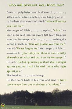 light-up-your-life:    source:   Bukhari hadith collection  Musnad abu yala al-mawsili