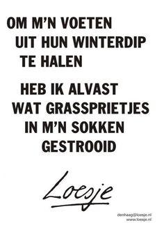 a958591f42de8 193 beste afbeeldingen van leuke teksten - Dutch quotes