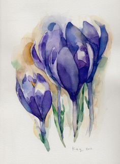 Beautifully water coloured picture of the stunning Crocus. The true colours are captured perfectly.