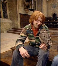 Harry Potter Icons, Harry Potter Ron Weasley, Harry Potter Aesthetic, Harry Potter World, Rupert Grint, Phelps Twins, Harry Potter Pictures, Cute Memes, Hogwarts