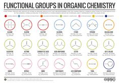 Functional groups in organic chemistry. Click 'visit site' to read more & download.