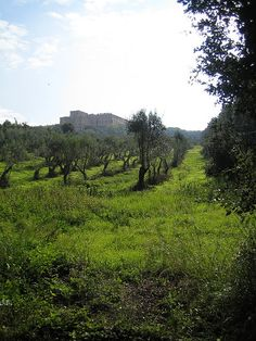 Villa Mondragone, Monte Porzio Catone, Rome
