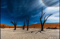 "Photo ""Stars in Deadvlei"" by T Travel Photography #500px"