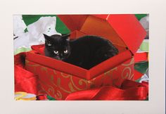 Black Cat Christmas Card- Hand made black cat card. via Etsy.