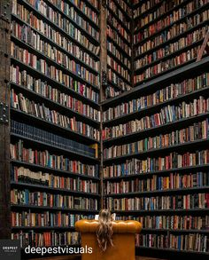 What I envision when I think of a home library.