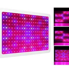 Morsen LED Grow Light 2 Dimmer On Off Switch Full Spectrum for Hydroponic Indoor Greenhouse Hydroponic Gardening, Hydroponics, Uniform Distribution, Best Led Grow Lights, Indoor Greenhouse, Lawn Sprinklers, Natural Garden, Buyers Guide