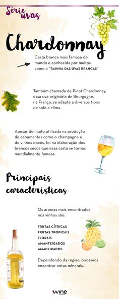 Já tomou vinho da uva Chardonnay? #wine #vinho #vinhobranco