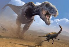 667 Best Tyrannosaurus Rex images  e86a25a14756