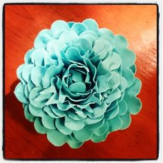 Open pioenroos Succulents, Rose, Flowers, Plants, Succulent Plants, Floral, Roses, Plant, Royal Icing Flowers
