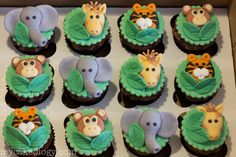 Elephants, monkeys,
