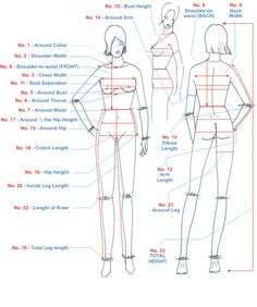 womens body measurements chart - Google Search
