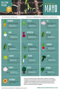 Pin by Ana Landeira on huerta . Eco Garden, Herb Garden Design, Garden Trees, Trees To Plant, Garden Plants, Herb Garden In Kitchen, Home Vegetable Garden, Potpourri, Acid Loving Plants