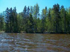 Huvila järveltä päin
