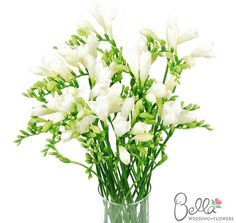 Freesia. Natural blooming season: Spring, Summer. Relative cost: Mid