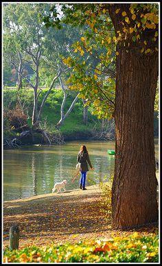 Melbourne Studley Park beautiful walk