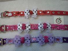neck collars for pets.... collares diseñados para mascotas..
