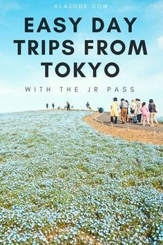 Make the most of your trip to Japan, no matter how long you're staying with these easy day trips from Tokyo. Whether you have one week in Japan or one month, the JR pass makes it easy to get around and see some of the best attractions in Japan. Here are j