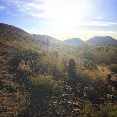 Morning Hike. Solo. #somewhereinarizona #womenwhohike #hikingadventures #explorearizona #exploreaz #arizona #hikingarizona