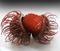 http://zipmanipulation.wordpress.com/  #hybrid #fruit #strawberry