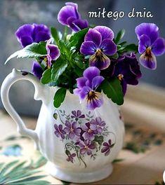 Purple Quotes, Pansies, Mugs, Decoration, Tableware, Pictures, Beautiful Bouquets, Super, Den
