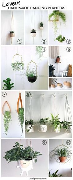 Indoor Hanging Plants that are Hard to Kill & Easy to Love - all the best handmade hanging planters right here! Indoor Hanging Plants that are Hard to Kill & Easy to Love - all the best handmade hanging planters right here! Best Indoor Hanging Plants, Indoor Planters, Hanging Plant Diy, Plant Hangers, Indoor Hanging Baskets, Macrame Hanging Planter, Indoor Cactus, Fall Planters, Hanging Pots