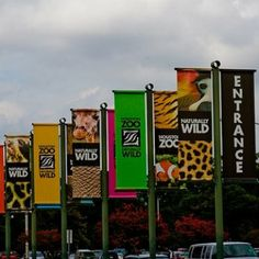 This is where I start to get excited! Houston Zoo, Get Excited, Galveston, Fort Worth, Entrance, Round Top, Vacation, City, Nature