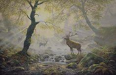 Maurice Bishop - Exmoor Majesty