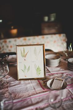 plant diagram details // photo by Jessica May Photography