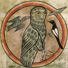 """medieval:  """" Detail of a miniature of an owl being mobbed by other birds.  From a bestiary, England, 2nd quarter of the 13th century,   """"  In spite of his great haircut, this owl is attacked by other birds. Or are the latter..."""