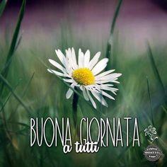 ★ Vintage & Co. ★  https://www.pinterest.com/VintageeCo/buongiorno-bonjour-buenos-dias-goodmorning-bom-dia/ Facebook: https://www.facebook.com/VintageeCo