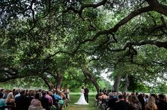 The Vineyards at Chappel Lodge Wedding in Texas | Jenny DeMarco Photography | Vera Wang | Reverie Gallery Wedding Blog