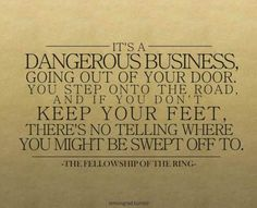 Fellowship of the Ring. Lord of the Rings: where the movie adaption is just about perfect.